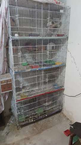 Cage for sale big hy