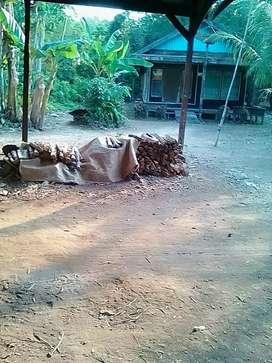 Di jual tanah secepatnya buka harga per meter 1.200000 bisa nego