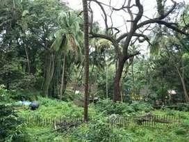 4000sqm Orchard Property@Kadamba Plateu close to V2 Mall.