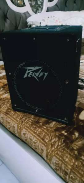 Peavey. Amp bluetoot aux and charging option