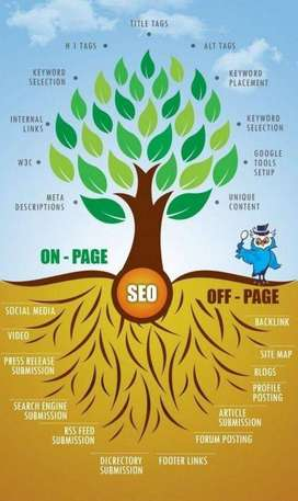 SEO service in Pakistan