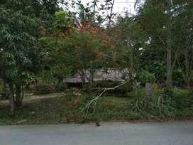 Jual Tanah Aceh Utara
