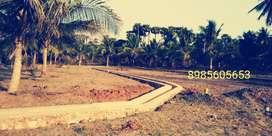 Beach concept open plots available at Bhogapuram