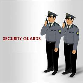 Night shifts security guard joining on the spot fixed salary with