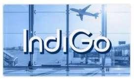 Indigo jobs urgent hiring