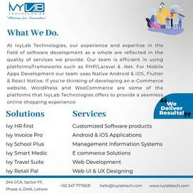 Accounting, HR & Payroll System, E-Commerce, POS