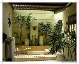 ~ Desain Relief Dinding Jayapura | Ahli / Tukang Desain Relief Dinding