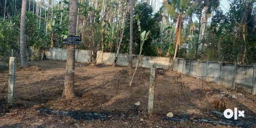 6.5 cent plot for sale,Mundur avanoor road 0