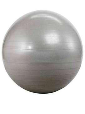 Gym Ball - Silver color