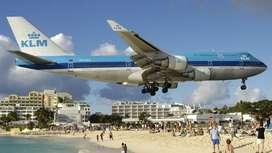 Air Ticket , Air Hostess , Cabin Crew , Assistant , Helper, Loader , L