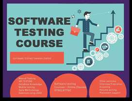 Software testing (different profile to testing in IT sector)