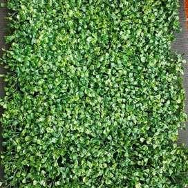 di jual daun tuk dinding daun dolar pelastik daun artificial  Hijau