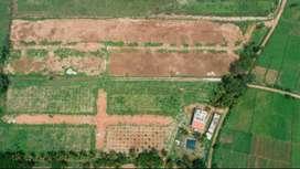 Plots for Sale in Sarkari Uttanahalli Near Mysore Outer Ring Rd