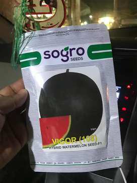 Watermelon seed vigor F1  Import from USA