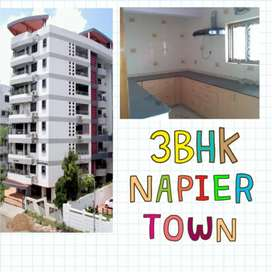 3 bedroom hall kitchen flat on rent Napier Town monte-carlo apartment