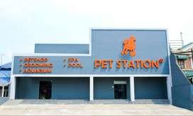Penjaga Toko Untuk Pet Shop Toko Hewan