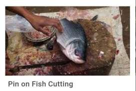 मछली काटने के लिये आदमी चाहीये