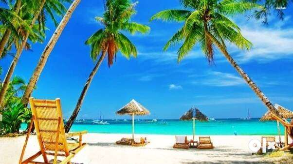 Best Time to Visit Goa | Best Season to Visit Go 0