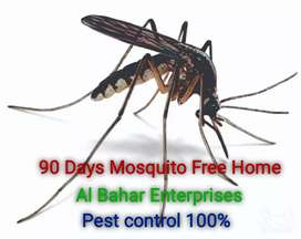 Mosquito Control Free Home For Two Months