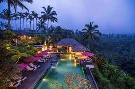 Villa Payangan Ubud Mr. Sim