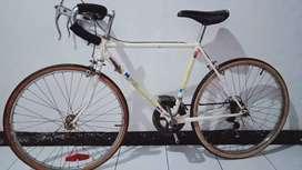 Sepeda Federal Alpha Original