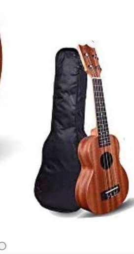 Guitar for Biggners