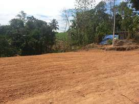 20 CENTS RESIDENTIAL LAND FOR SALE IN PUNALUR