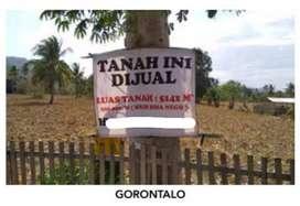 1029. Dijual murah Tanah di Jl Raya Talumelit, Limboto Gorontalo