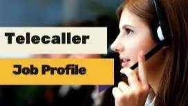 Thrissur Kerala Female Tele Calling Job