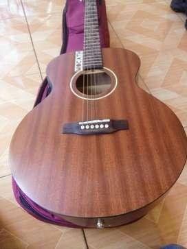 Jual Gitar Akustik R.Hall RSG 20 MNT Original