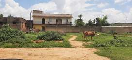 Plot for sale in chano near four lane