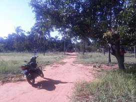 5cent house plot in nagercoil
