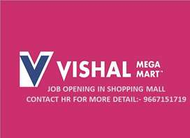 URGENT VACANCY IN VISHAL MEGA MART (BOYS AND GIRLS)