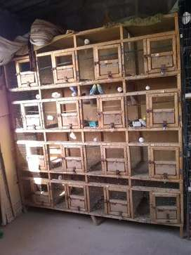 16 portion Wooden cage