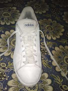 Awosome adidas brad shoes branded white shoes