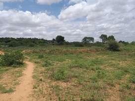 10 Acres Agriculture.farm land sale near Shoolagiri.