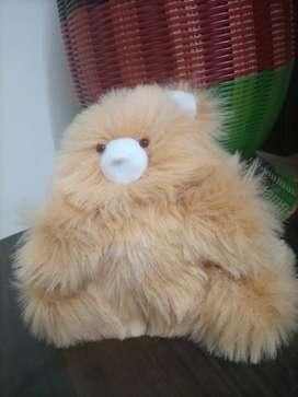 Teddy bears - new product - soft toys