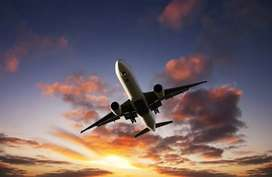 Direct opening for Airport ground staff job