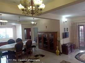 3bhk fully furnished flat kacheripady(ernakulam)26000