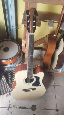 Gitar akustik coleclark pikguard