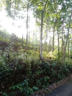 Dijual tanah di daerah tasikmalaya