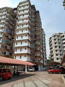 3 bhk flat for rent at BCG golden orchid Thammanam