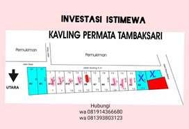 Investasi strategis di desa  Tambaksari Rowosari
