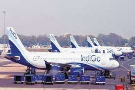Urgent hiring for ground staff in indigo airlines