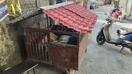 Dog house made of Iron bars and net