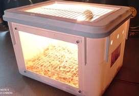 Kandang box lolohan burung +lampu 2.5 watt kaca depaan arklilik