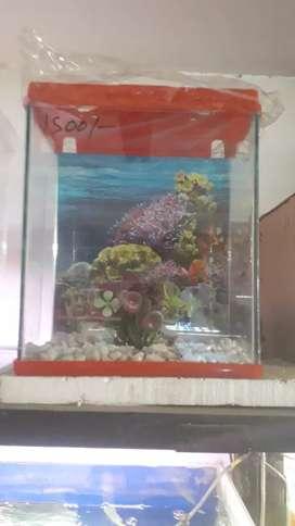 """12"""" fish aquarium"""