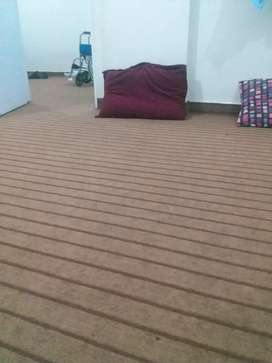 Carpet in used only 4furth month price 2000