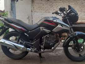Honda tiger istimewa