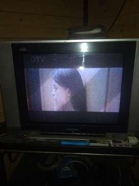 Tv polytron 21 inc